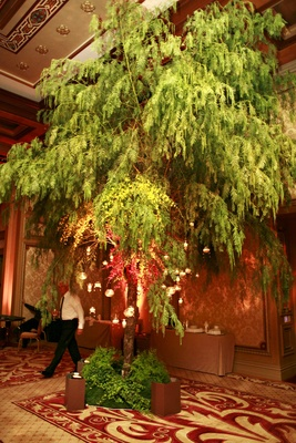 Candles hanging from tree in ballroom