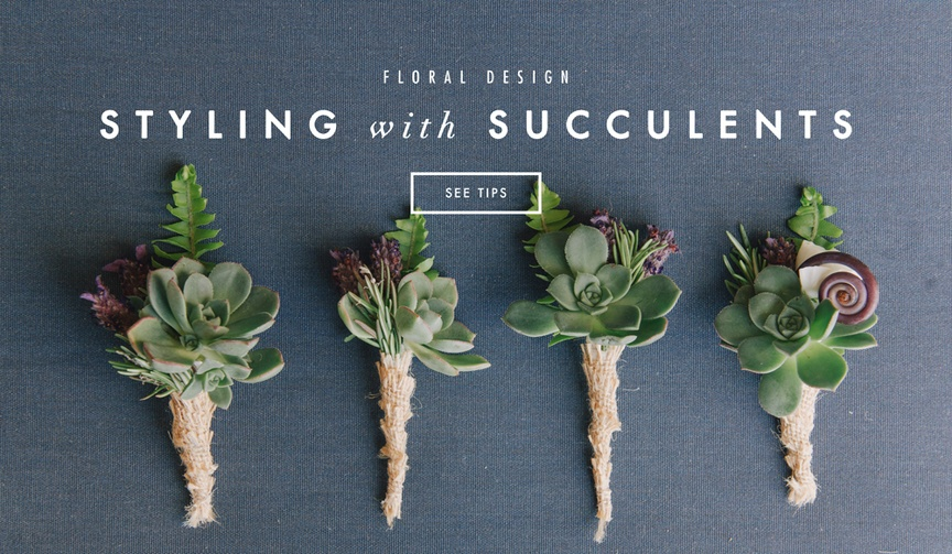 Succulents in wedding decor and floral design
