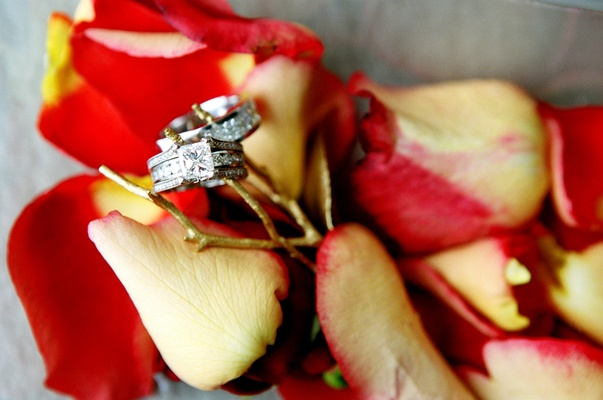 Engagement ring and wedding band on rose petals