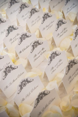 Seating card display on bed of rose petals