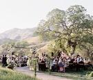 Alfresco wedding under oak tree in California