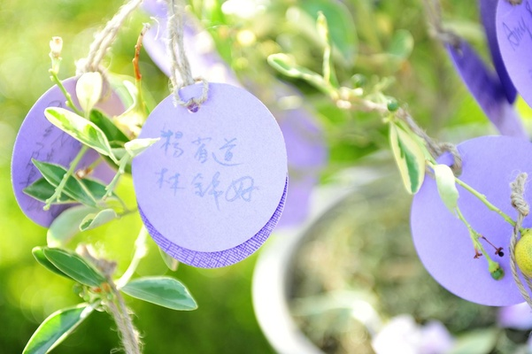 Purple circle stationery hanging from tree with Taiwanese and Korean writing