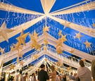 Cobalt blue sky with twinkling lights and stars