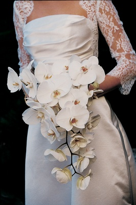Bride carries a trailing bouquet of white orchids