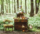 Wedding cake on a stump atop a wood chest in the forest