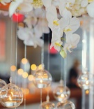Wedding reception with tea lights in glass spheres hung from arch of white orchids and hydrangeas